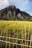 Le Laos Photo libre de droits