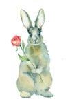 Le lapin d'aquarelle avec s'est levé Photographie stock libre de droits
