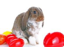 Le lapin de Pâques taillent avec des oeufs sur le fond blanc d'isolement Photos stock