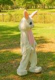 Le lapin de Pâques visite l'ocala Images libres de droits