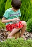 Le lapin est bel animal de nature Photos libres de droits