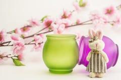 Le lapin et le pommier fleurit sur le fond blanc Photo stock