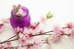 Le lapin et le pommier fleurit sur le fond blanc Photos stock
