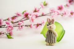 Le lapin et le pommier fleurit sur le fond blanc Image libre de droits