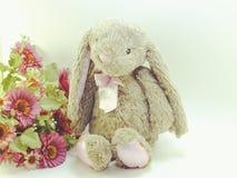 Le lapin sur l'espace rustique de fond pour le vintage des textes filtre la couleur Photographie stock