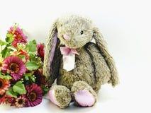 Le lapin sur l'espace rustique de fond pour le vintage des textes filtre la couleur Photo libre de droits