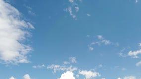 Le laps de temps avec des effets scéniques merveilleux et les cumulus blancs pelucheux soufflent dans un ciel bleu clips vidéos