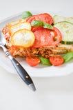 Le lasagne al forno fatte con la salsa bolognese del manzo tritato hanno completato con basilico Fotografia Stock