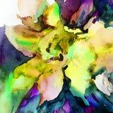 Le lavage humide de texture exotique florale de fleur de fond d'abrégé sur art d'aquarelle a brouillé l'imagination Photographie stock
