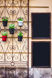 Le lavagne vicino all'entrata al caffè è decorata con i fiori Fotografia Stock Libera da Diritti
