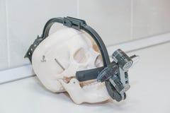 Le lenti di ingrandimento binoculari dentarie su skul bianco su tablel bianco cranium Occhiali di protezione del dentista, vetri  Immagine Stock Libera da Diritti