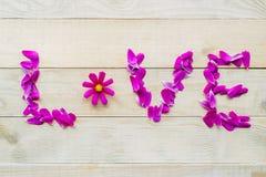 Le lettrage de l'amour des fleurs de cosmos de pétales s'étendent sur la table en bois Photographie stock libre de droits