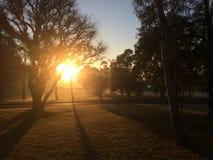 Le lever de soleil à l'Université de Macquarie Photographie stock