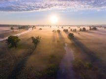 Le lever de soleil aérien avec le brouillard à l'arbre complète dans la campagne rurale Photographie stock