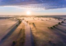 Le lever de soleil aérien avec le brouillard à l'arbre complète dans la campagne rurale Photo libre de droits