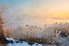 Le lever de soleil de brouillard de mornig Photo libre de droits