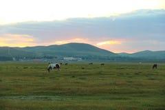 Le lever de soleil de la prairie II image stock
