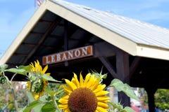 Le Liban Ohio Image libre de droits