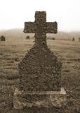Le lichen a couvert la pierre tombale Image stock