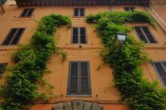 Le lierre a couvert le bâtiment, Rome, Italie Images libres de droits