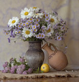 Le lilas : erreur d'assortiment Photos libres de droits