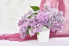 Le lilas fleurit le bouquet dans le vase blanc sur le fond blanc vacances photographie stock libre de droits