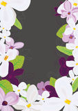 Le lilas fleurit Style_eps différent Image stock