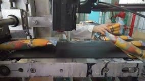 Le linee automatiche del trasportatore per la produzione del gelato stock footage