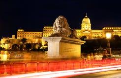 Le lion de la passerelle à chaînes à Budapest photographie stock
