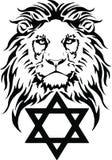 Le lion et le symbole du judaïsme - étoile de David, Megan David photographie stock