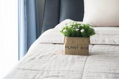 Le lit avec la fleur blanche sur le pot de fleur Photos libres de droits
