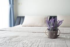 Le lit avec la fleur pourpre de lavande sur le pot de fleur Photo stock