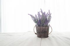 Le lit avec la fleur pourpre et la lumière du soleil de lavande du verre de fenêtres dans la chambre à coucher Image stock