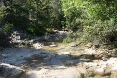 Le lit d'une rivière de montagne Photos libres de droits