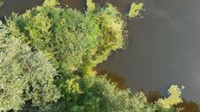 Le lit de rivière est une vue supérieure du bourdon banque de vidéos