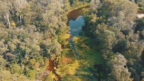 Le lit de rivière est une vue supérieure du bourdon clips vidéos