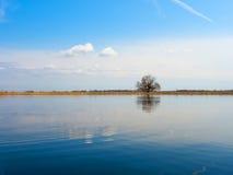 Le littoral Photo libre de droits