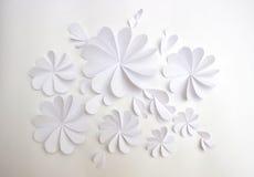 Le livre blanc fleurit le fond décoratif Image libre de droits