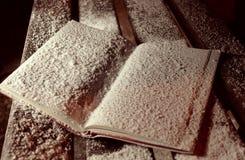 Le livre bloqué par la neige ouvert sur le banch en parc d'hiver Images libres de droits