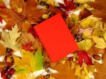 Le livre de l'automne (serie) Image stock