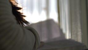 Le livre de lecture de femme près de la fenêtre, le soleil rayonne banque de vidéos
