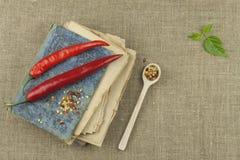 Le livre de vieilles recettes Poivrons de piment, ingrédients pour la préparation alimentaire Place pour le texte Image libre de droits