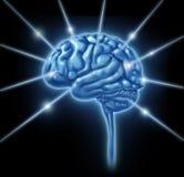 Le lobe d'intelligence de connexions de cerveau sectionne des divis Images libres de droits