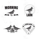 Le logo coloré de vecteur réglé avec le désert Crested l'oiseau d'alouette Photos libres de droits