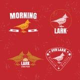 Le logo coloré de vecteur réglé avec le désert Crested l'oiseau d'alouette illustration libre de droits