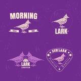 Le logo coloré de vecteur réglé avec le désert Crested l'oiseau d'alouette illustration stock