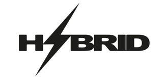 Le Logotype marque avec des lettres l'hybride avec la foudre Eco Photos libres de droits