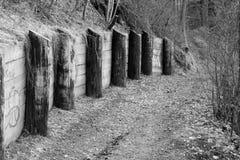 Le long du chemin isolé Photographie stock