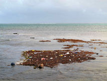 le long du détritus de flottement de rivage de pollution image libre de droits