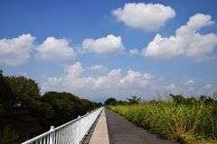 le long du fleuve de chemin photos stock